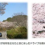 嵐山―高雄パークウエイ