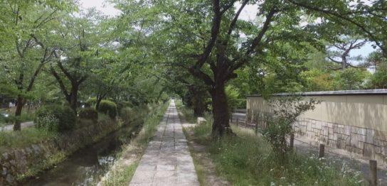 日本で唯一の旅専門チャンネル